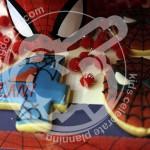 بیسکوییت مرد عنکبوتی